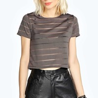 Gabrielle Mesh Rib Stripe Crop Top