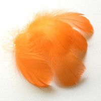 Feather Orange Goose Coquille Dyed | Earrings feathers | Millinery Jewelry Crafts supplies| Hair accessories FA32