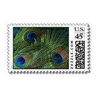 Green Peacock Feathers Postage Stamps from Zazzle.com