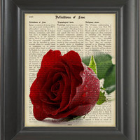 Red Rose -printed on Definitios of Love page. 250Gram paper.