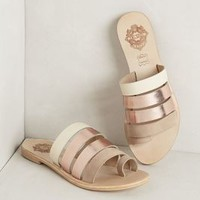 Ayden Slides by Sol Sana Gold