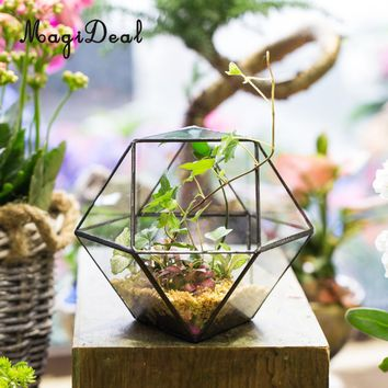 MagiDeal Modern Tabletop Glass Terrarium Planter Box DIY Decorative Flower Pot for Home Patio Deck Window Supplies-Black/Gold