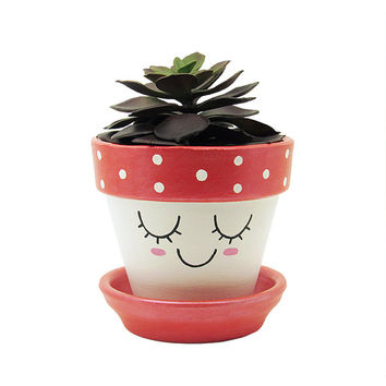 Succulent Planter, Terracotta Pot, Cute Face Planter, Air Plant Holder, Plant Pot, Flower Pot, Indoor Planter, Succulent Pot, Red Planter