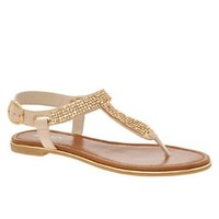 Amazon.com: ALDO Brisky - Women Flat Sandals: Shoes