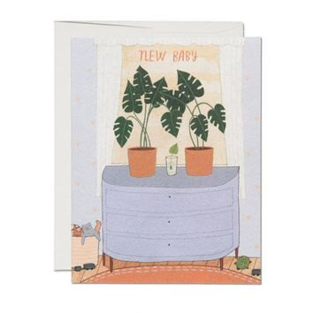RED CAP CARDS NURSERY PLANTS CARDS