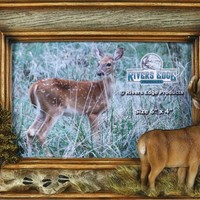 Hunting Frames - Deer Picture Frame