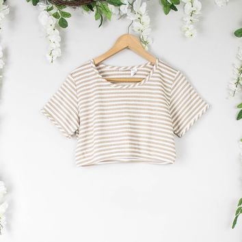 Vintage Nude Striped Crop Top