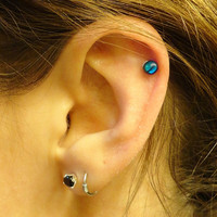 Tiny Turquoise Shell Cartliage Earring Conch Tragus Helix Piercing