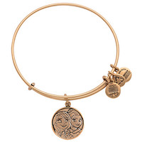 Disney Parks Frozen Anna and Elsa Bangle by Alex & Ani Charm Gold finish new