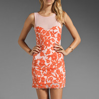 Talulah Ray of Sun Dress in Pastel Peach/Peach Red from REVOLVEclothing.com