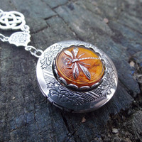 Double Celtic Dragonfly in Amber - Czech Glass Dragonfly Button, Celtic Knot Accent and Sterling Silver Plated Locket Necklace