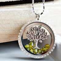 Living Locket Memory Glass Locket Jewelry,Stainless Steel Locket Pendant,Family Tree of Life Locket Necklace,Tree Charm Floating Locket
