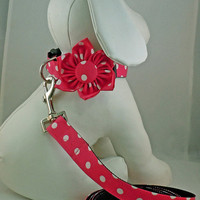 Dog Collar with Flower or Bow Tie and Leash  by LearnedStitchworks
