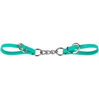 Turquoise Biothane Curbstrap