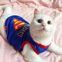 New Arrival Summer pet vest clothing for cats dog Breathable cool shop gatos roupa para gato