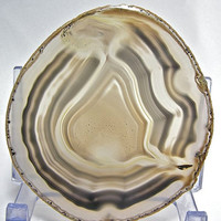 Gorgeous Polished Brazilian Agate Slice 4.4 inches Free US Shipping