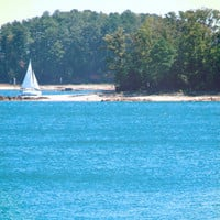 Nautical Photography - Sailboat on Lake - Peaceful Blue Water, Lush Green Woods, Summer Day - Lake House Decor  - Wall Art Print