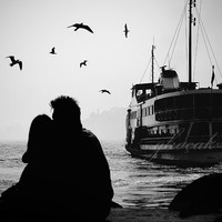 infinity love, photography, black and white, birds, valentines day, istanbul, Black and White, wall art print