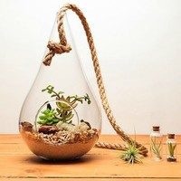 Fully Assembled Tear Drop Terrarium