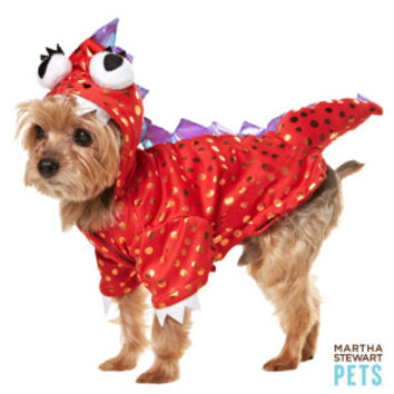 Martha Stewart Pets® Red Dragon Costume - Dog Halloween - Dog - PetSmart
