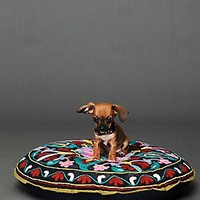 Free People  Embroidered Krishna Dog Bed at Free People Clothing Boutique