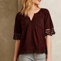Lace-Trimmed Splitneck Tee by Akemi + Kin Chocolate