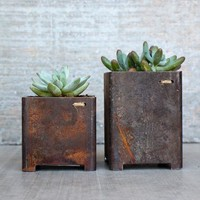 Square Garden Planters – Set of 2