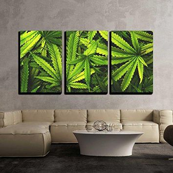 """wall26 - 3 Piece Canvas Wall Art - Cannabis Texture Marijuana Leaf Pile Background with Flat Vintage Style - Modern Home Decor Stretched and Framed Ready to Hang - 16""""x24""""x3 Panels"""