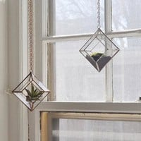 Beveled Glass and Copper Terrarium Kit Made in USA