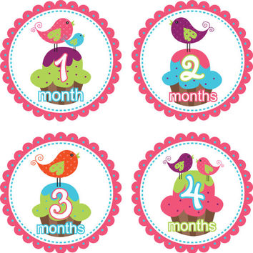 Baby Month Stickers Baby Monthly Stickers Girl Monthly Shirt Stickers Cupcakes Birds Pink Shower Gift Photo Prop Baby Milestone Sticker