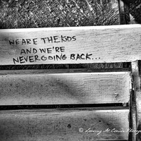 urban graffiti art photo, rebel, rebellious, urban decay, quote, freedom message on a bench, punk rock, edgy urban art, black and white
