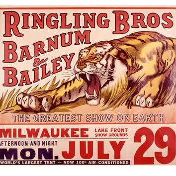 Ringling Brothers Tiger Circus Fine Art Print