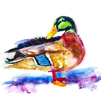 Duck Watercolor Print 1, prints, digital prints, wall art, home décor, wall décor, giclee, watercolor painting, watercolor,