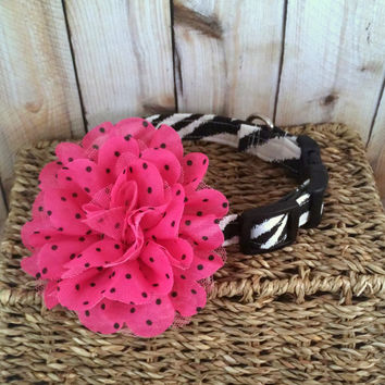 Hot Pink with Black Dots Chiffon Dog Collar Flower, Pretty Flower, Removable Dog Accessory, Hair Accessory