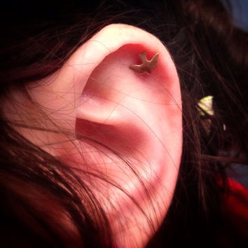 Flying Golden Bird Surgical Steel Stud Earring. Perfect for Helix and Cartilage Piercings.