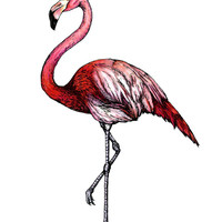 Flamingo Art Print by SaraSotoMotto