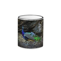 Beautiful peacock on a ringer mug