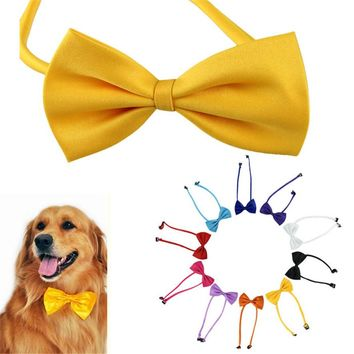 Free 1 pcs Dog Bow Tie free just pay shipping!