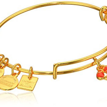 Alex and Ani Charity By Design, Lobster Expandable Yellow Gold Bangle Bracelet