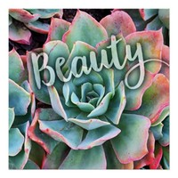 """Beauty"" Mint Green and Pink Cactus Close-up Photo Poster"