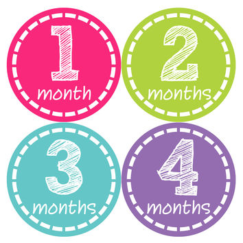 Baby Girl Monthly Baby Stickers Style #148