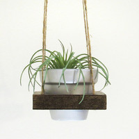 Air Planter, Hanging Planter, Modern Planter, Succulent Planter, Succulent Pot, Rustic Planter, Wood Planter, Terracotta Pot, Silver Planter