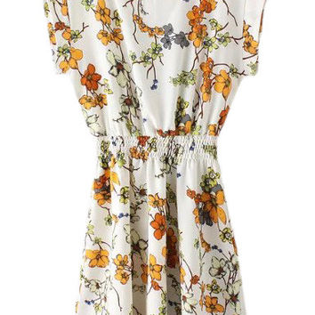 Multicolor Zipper Back Elastic Waist Floral Print Dress