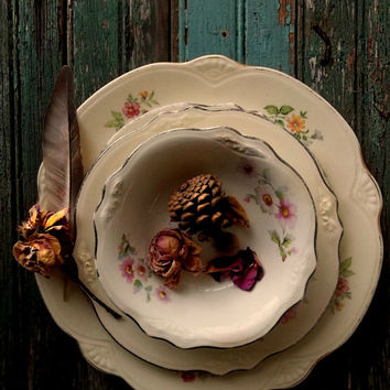 Antique Homer Laughlin China Setting. Cottage Romance. French Farmhouse. Woodland Forest Rustic Romance. Virginia Rose. Anemones Pattern