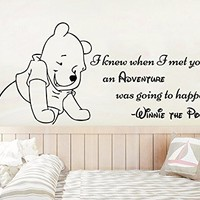 Wall Decal Winnie The Pooh Quote. Wall Decals Quotes I Knew When I Met You An Adventure. Classic Pooh Nursery Decor. Kids Vinyl Sticker. Adventure Wall Sticker NS1115