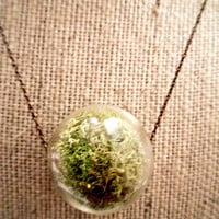 Live Moss Glass Hanging Terrarium Pendant Necklace by Heronandlamb