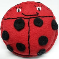 Hand Warmers, Pocket Warmers, Rice Filled, Set of Two - Lovely Lady Bugs