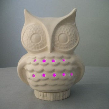 White Owl Night Light or Lantern Home Decor