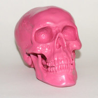 PINK SKULL Any Color Bright Metallic Chrome Gold Chalkboard Home Art Decor Oddities Macabre Medical Skeleton Grunge Punk Hipster Goonies