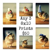 Any Three 8x10 Chicks in Hats Photo Prints